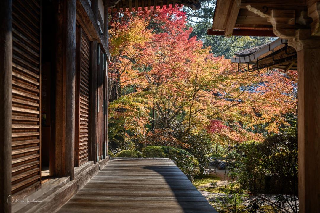 Saimiyo-Ji Temple, Takao, Kyoto