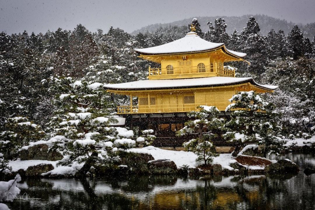Kinkaku-ji Temple, the Golden Pavilion under snow in Winter