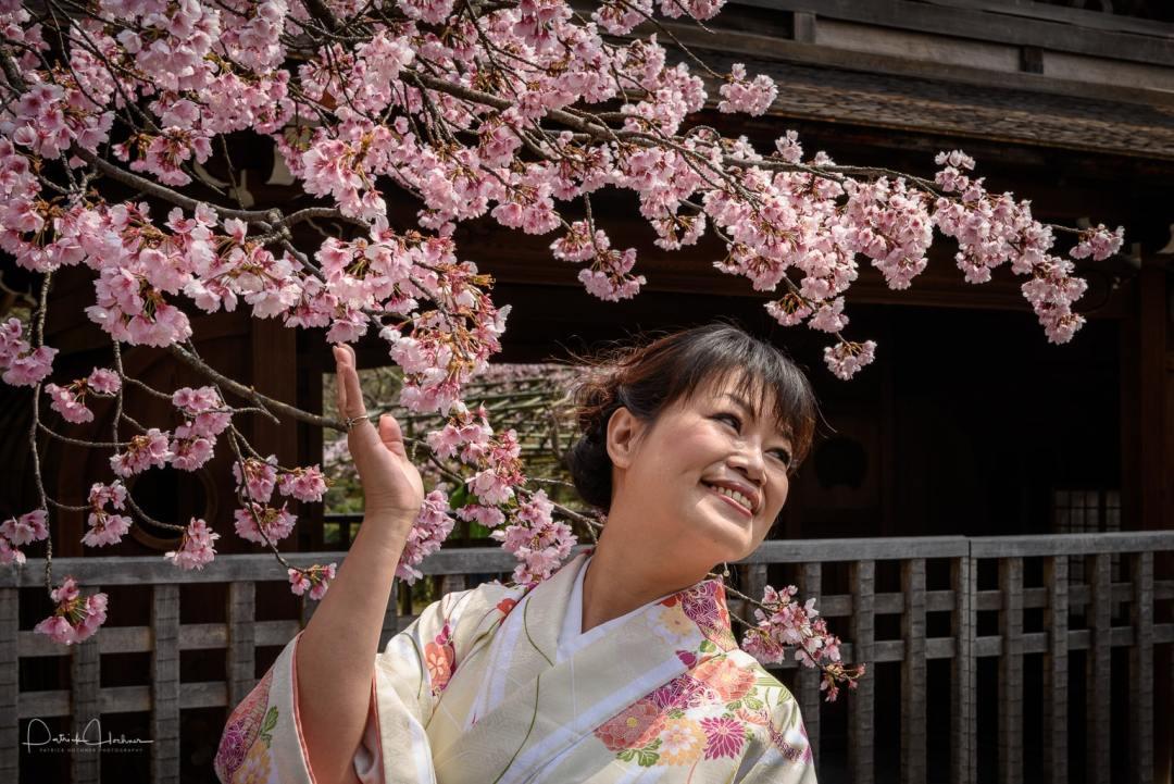 Cherry Blossom at the Shôsei-en Garden, Kyoto