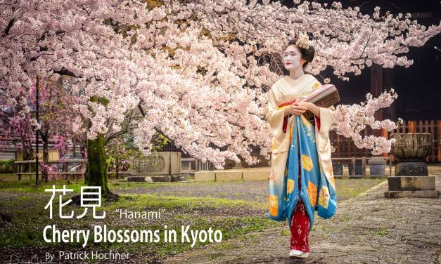 Hanami – Cherry Blossoms in Kyoto