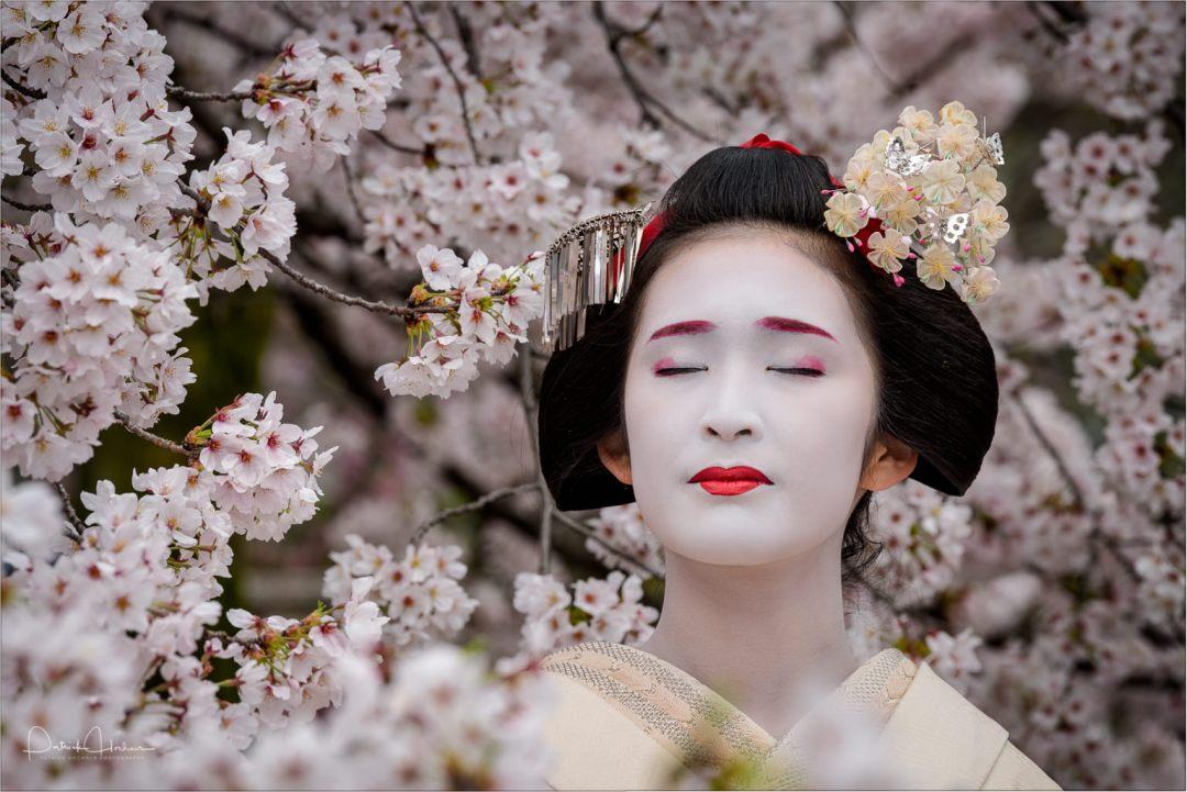 Maiko Fukuharu (Okatome Okiya) of Gion Higashi