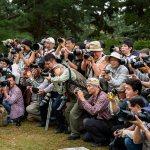 The Photographers…
