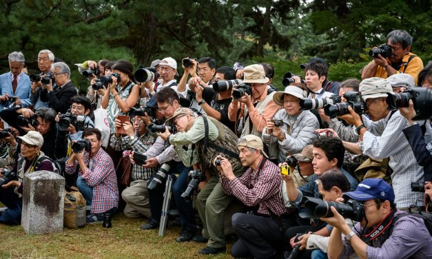 The Photographers…