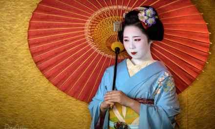 Portrait of Maiko Kikuyae