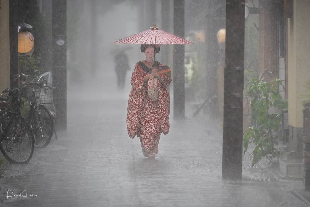 Pouring down - maiko protecting herself from the heavy rain, Kyoto.
