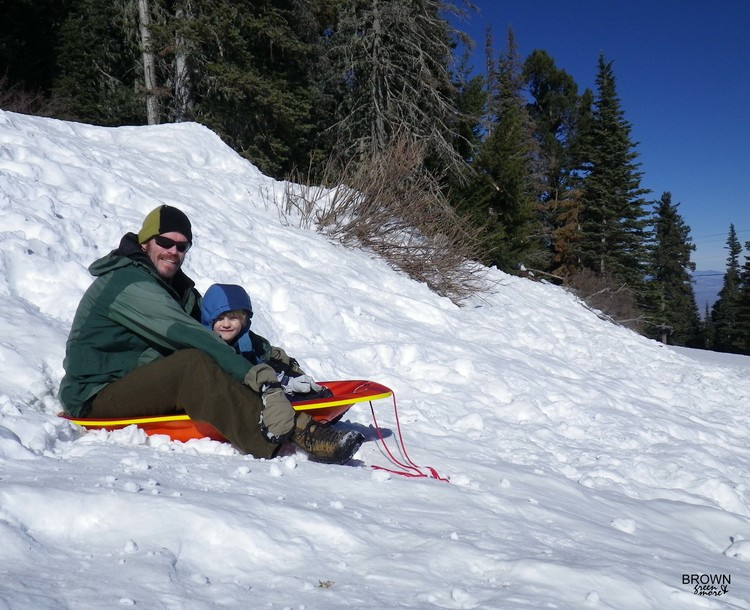 Browngreenandmoresnowplaysledding