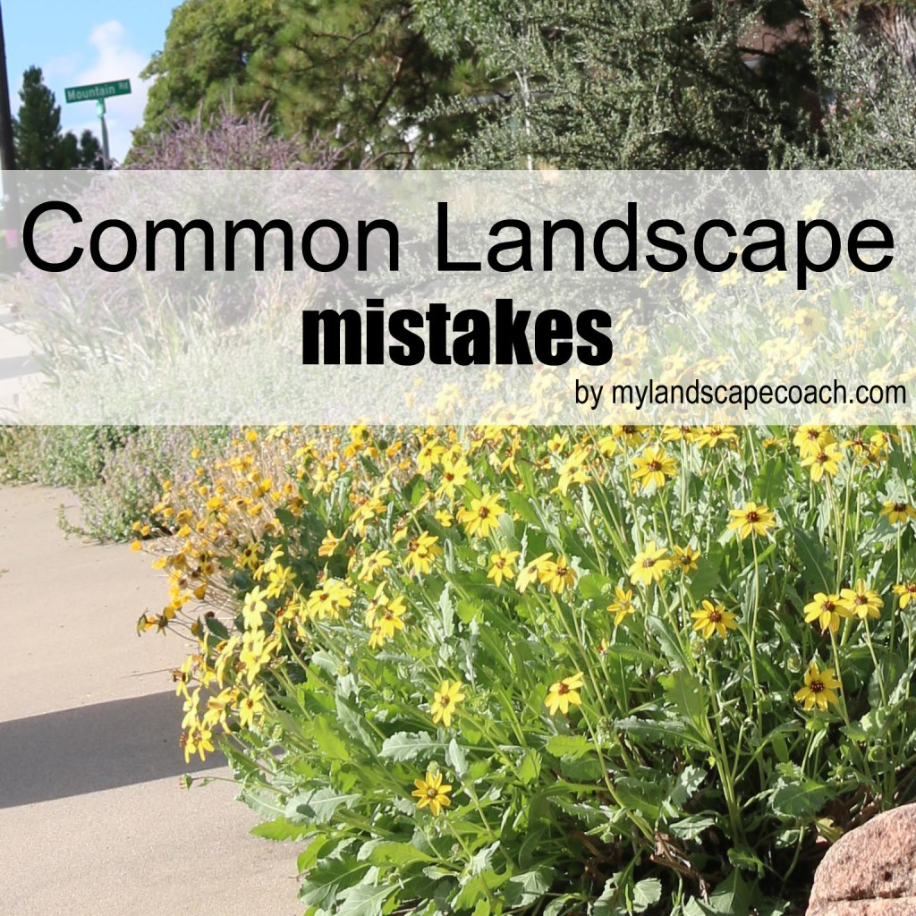 commonlandscapemistakes-copy