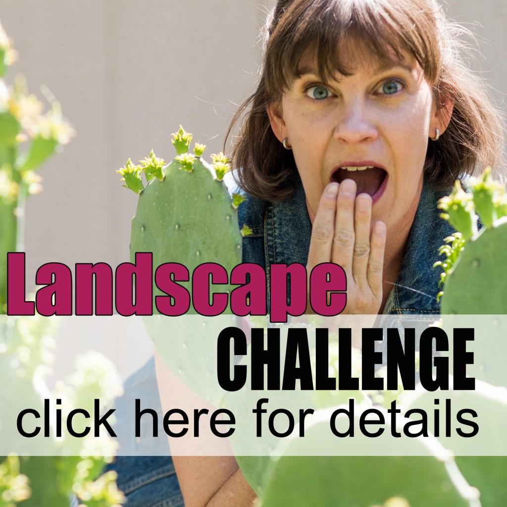 landscapechallenge