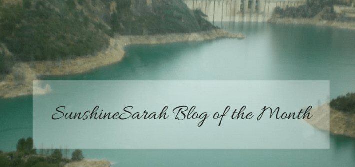 sunshinesarah, sunshine sarah, blog of the month, mylavednertintedworld, lightinglavender