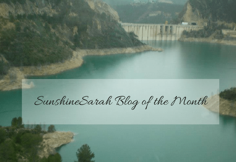 sunshinesarah, sunshine sarah, blog of the month, mylavednertintedworld, lightinglavender