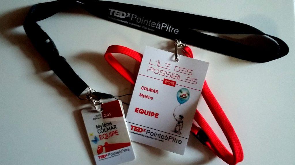 A l'heure des au revoir : 2 ans de TEDxPointeàPitre en 10 points clés