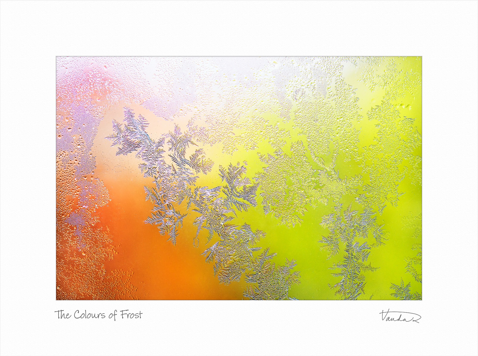 The Colours of Frost