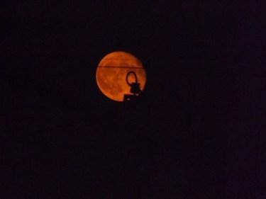 No.4823 満月(一日過ぎたけど)をデジカメで撮ってみた!・・・2020/10/20