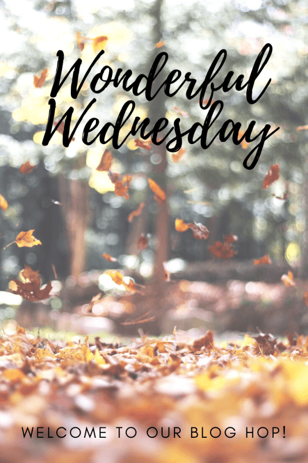 Welcome to the Wonderful Wednesday Blog Hop where we enjoy linking up posts about recipes, crafts, DIY, everyday life & more every Tue at 7:00 pm EST #wwbloghop