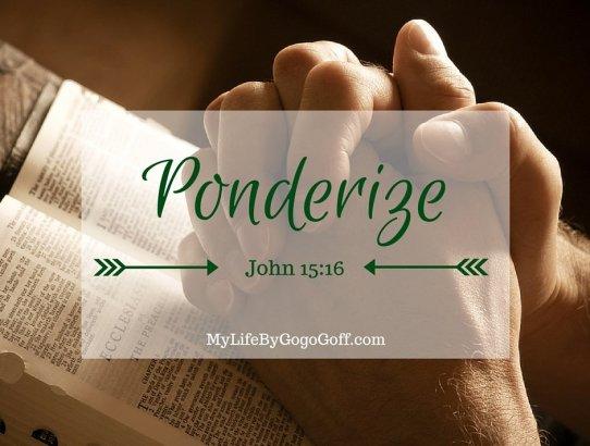 Ponderize Preach My Gospel