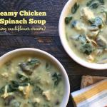 Try this delicious Paleo Creamy Chicken & Spinach soup. It uses cauliflower cream sauce so it's dairy free and low carb too!