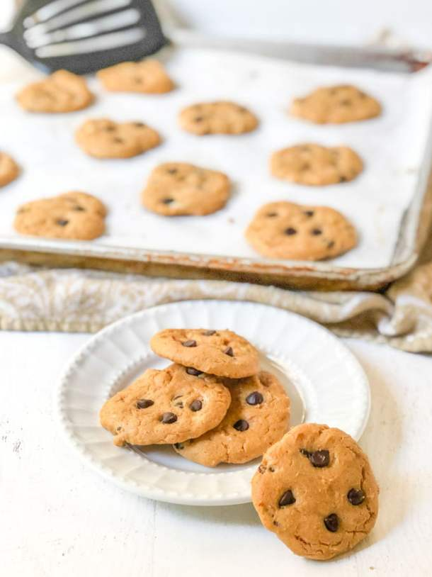white plate with low carb peanut butter chocolate chip cookies with cookie try in background