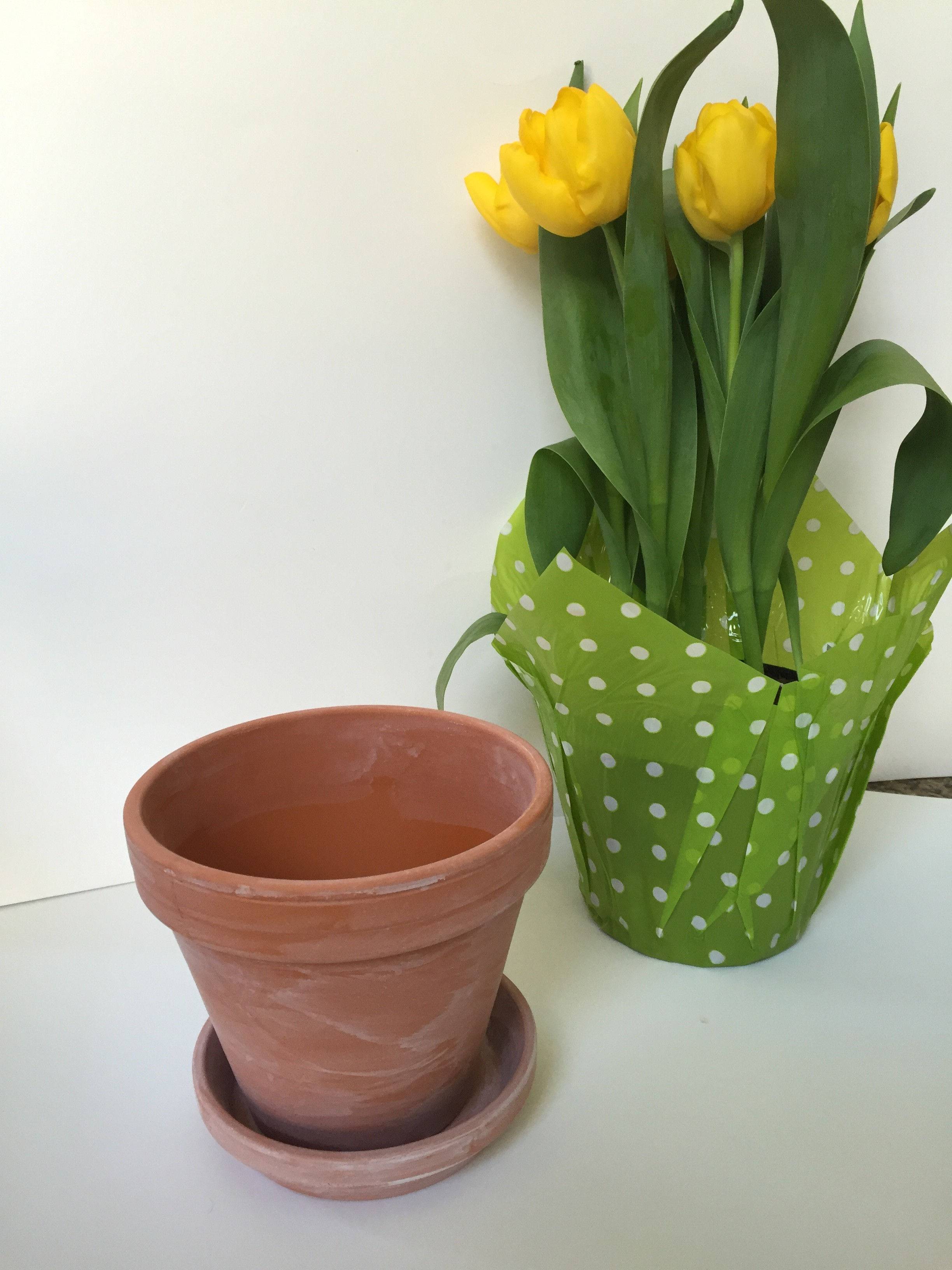 Whitewashed Flower Pots by www.whitecottagehomeandliving.com