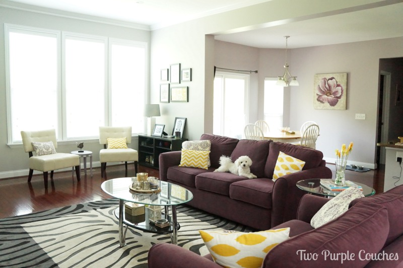 Focal Point Purple Couches