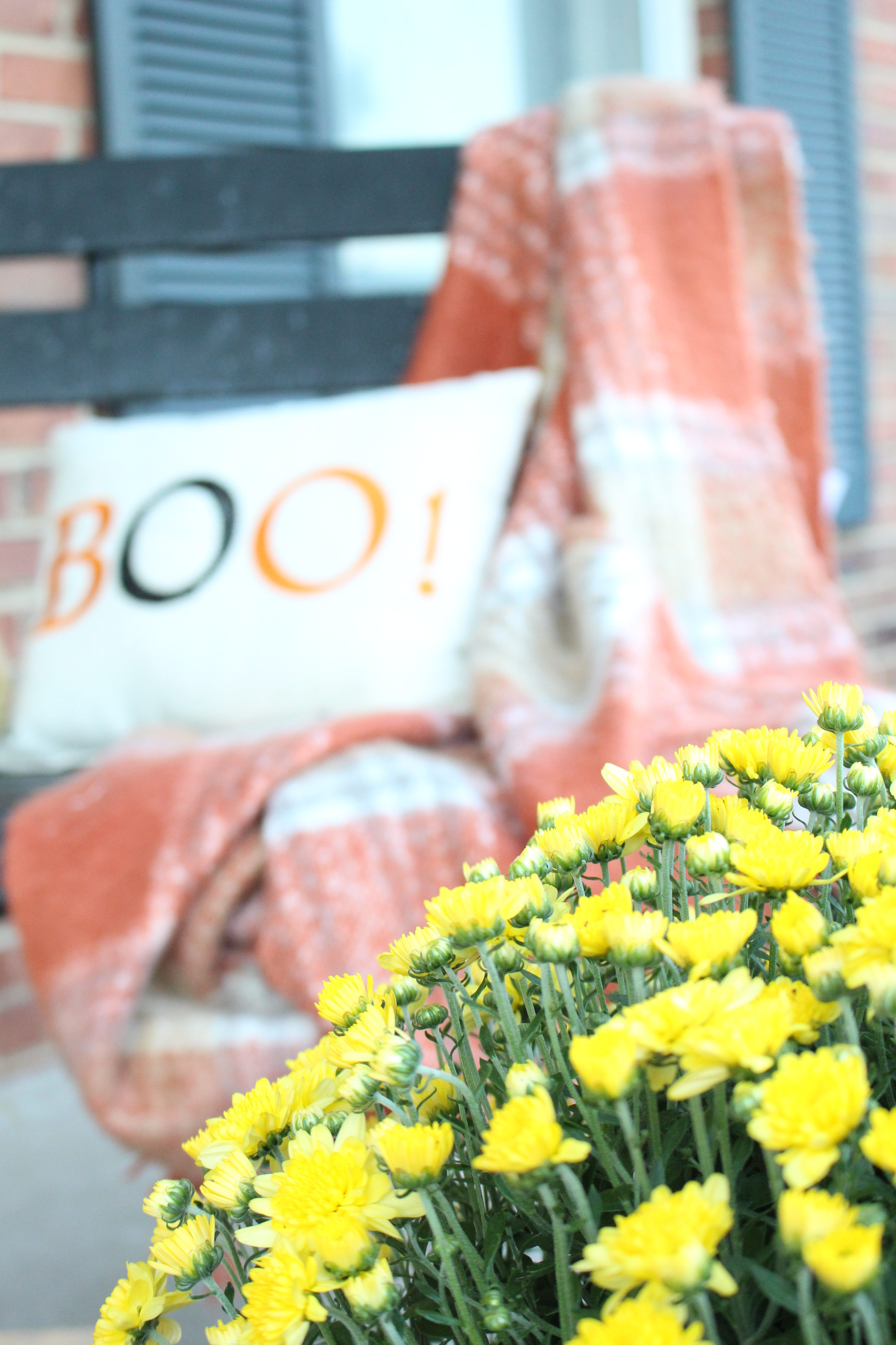 Fall Porch Ideas- Harvest outdoor decor- Decorating for fall- Fall porch- Autumn- Outdoor decor- decorating outdoors for fall- porch- seasonal outdoor decor- pumpkins- mums- Halloween front porch