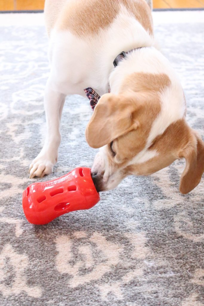 Milk-Bone Active Treat Tumbler- dog toy- treat toy for dogs- active toys for dogs