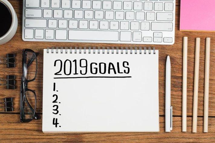 My 2019 Goals