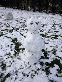 snow139