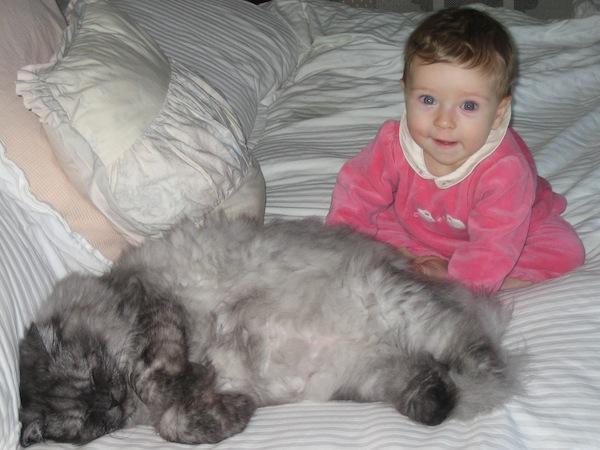 babyandcat