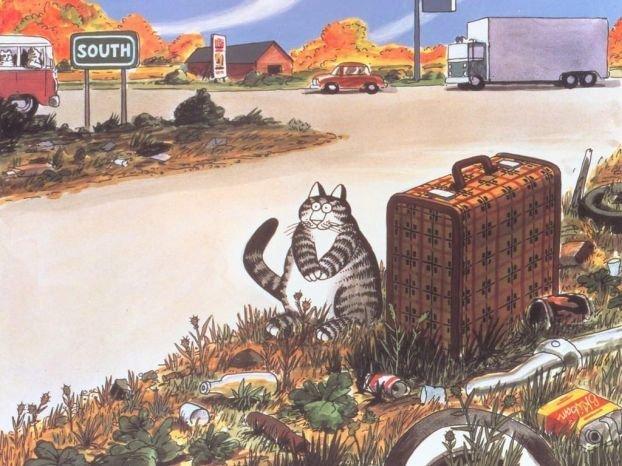 Сказка о коте-путешественнике