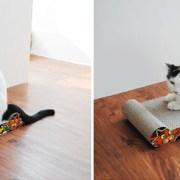 Cat-scratcher-cat2