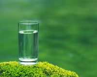 glass-water-on-moss-1-1280x1024