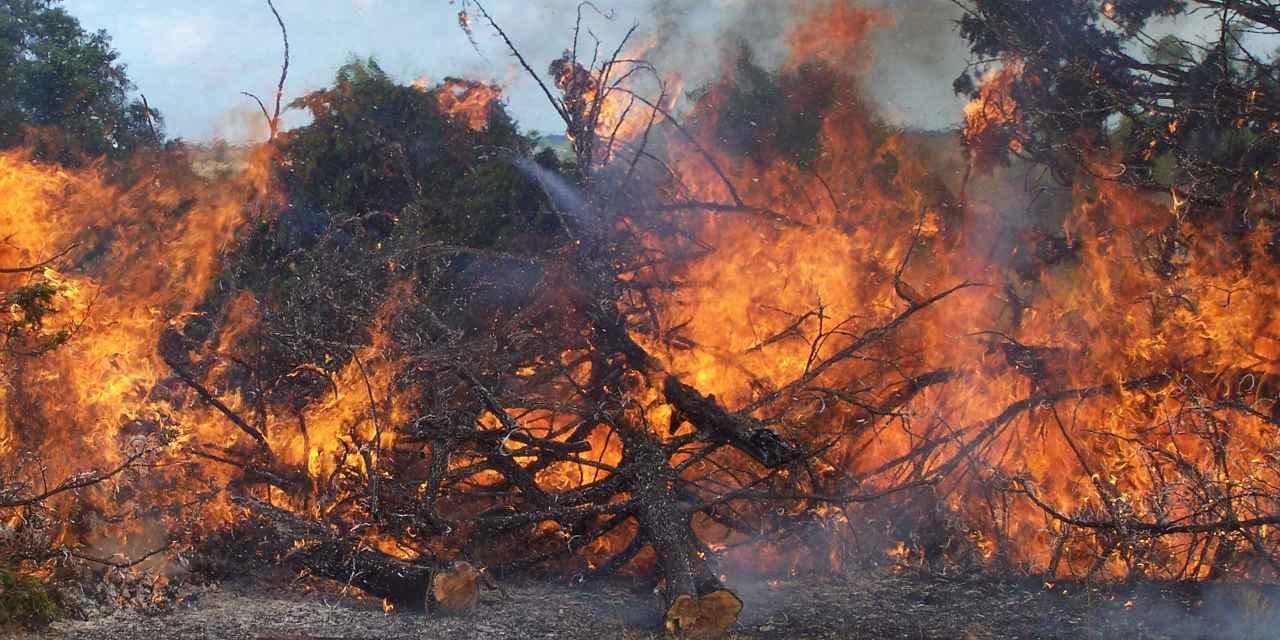 DEC: Brush burning ban begins March 16