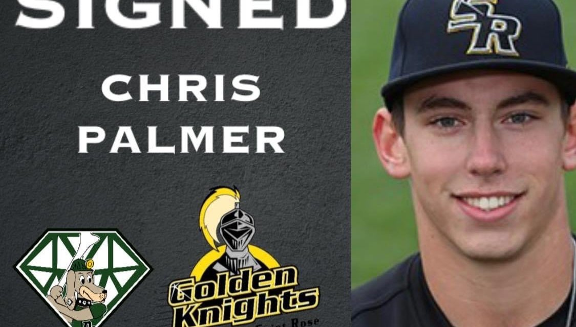 DiamondDawgs sign another player