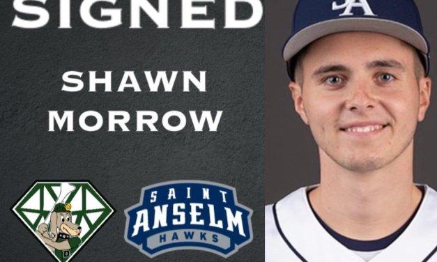 DiamondDawgs sign Morrow