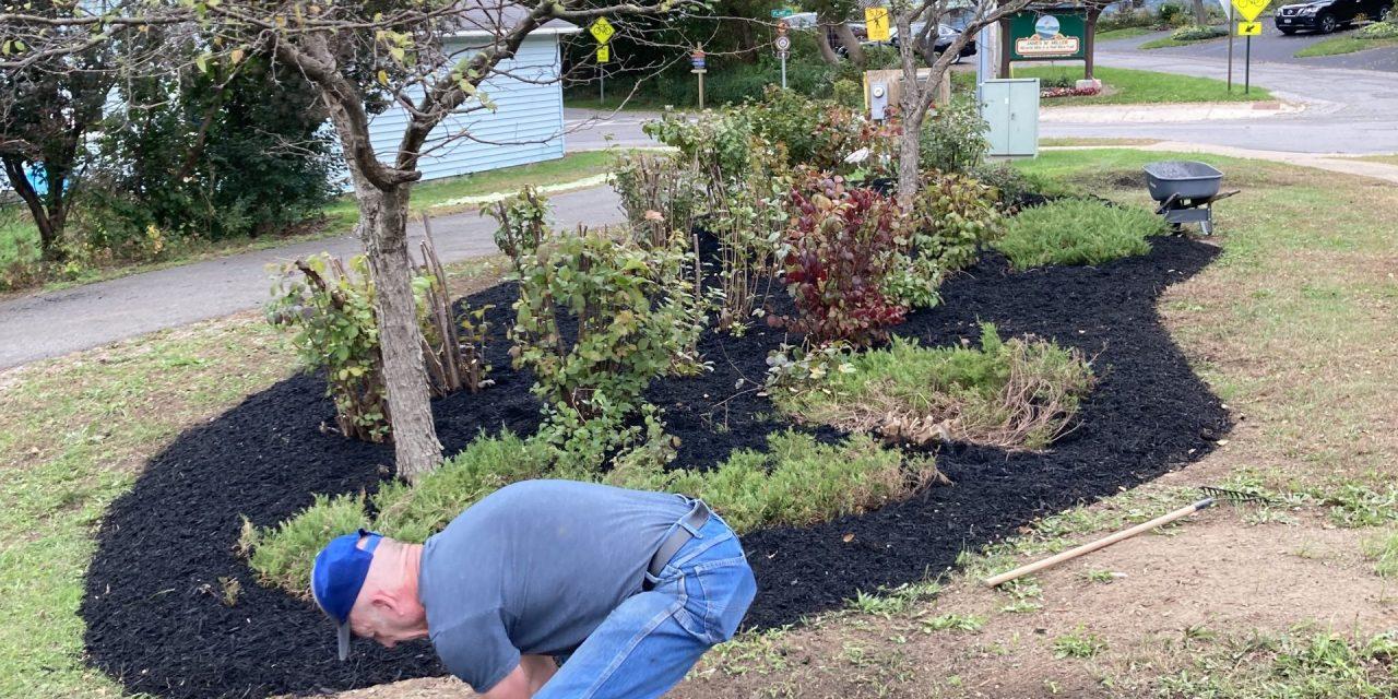 Southside Improvement Association continues landscaping work