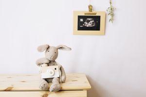 ecografía bebé
