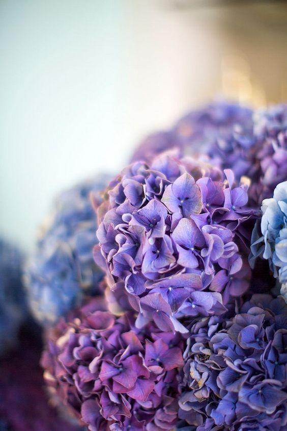 flores boda ultra violet