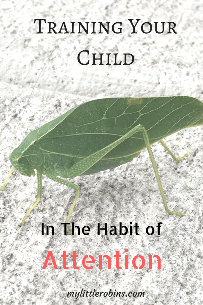 The #habit of @attention is so important to develop during the early years!