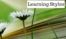 Why You Can Stop Worrying About Learning Styles