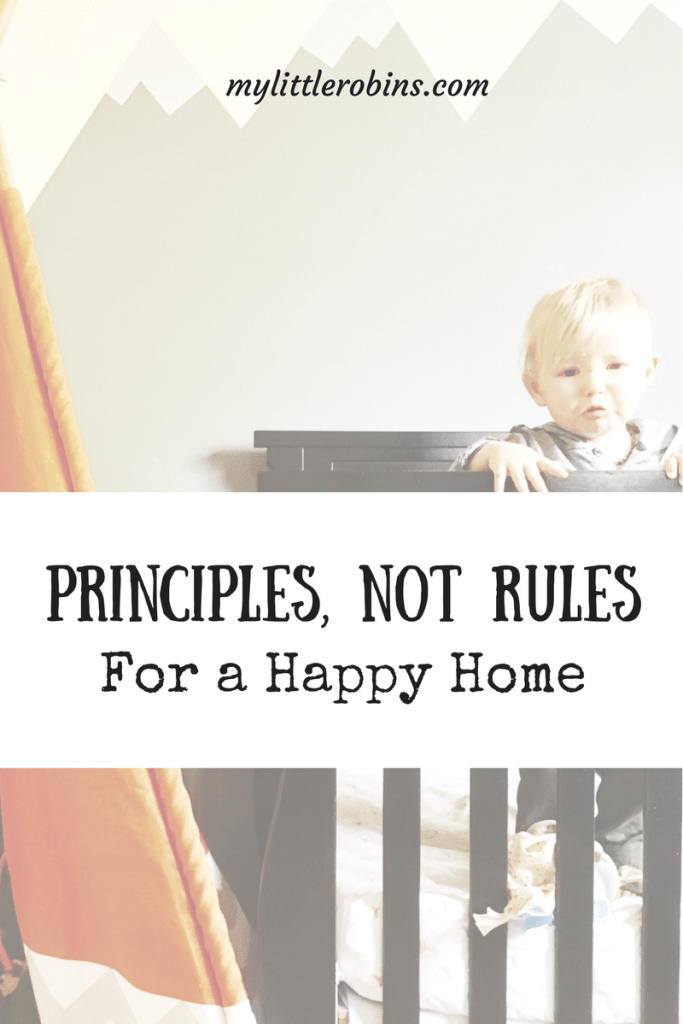 Principles, Not Rules