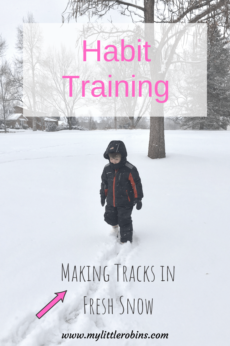 "Charlotte Mason called habit training ""laying down the rails,"" but I think another good analogy is making tracks in fresh snow."
