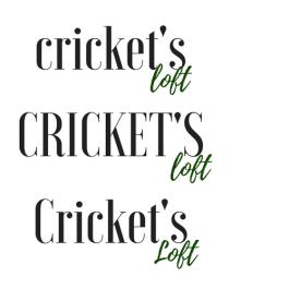 Logo Option/Font options