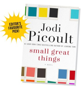 Small Great Things: Book review at www.mylocalcollaborative.com