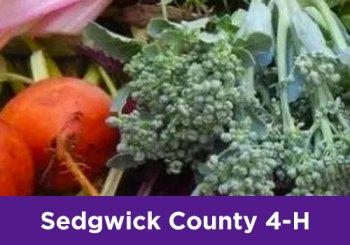 Sedgwick County 4-H