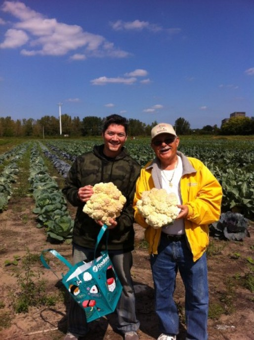So much cauliflower!