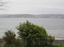 Bushes blow in the wind, Kilcregan
