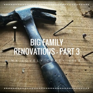 big family renovations