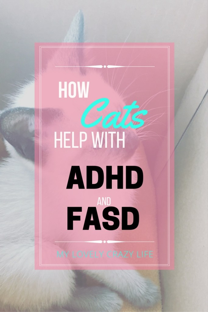 cats for adhd and fasd