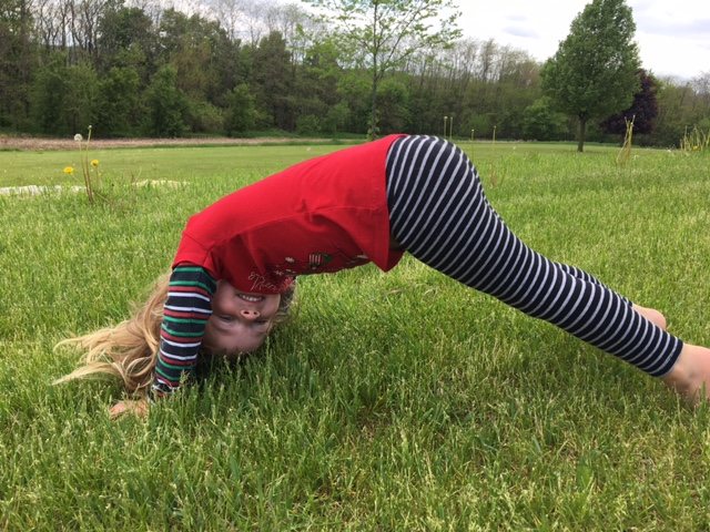 Plank attempt #2