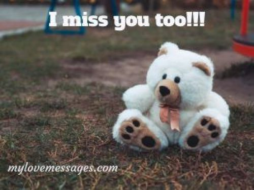 I Miss You Too Much Meme for Her